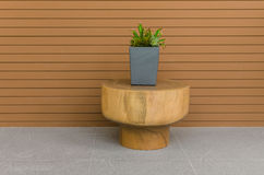 Plants in modern grey pot on round wood table with wood panel Royalty Free Stock Images