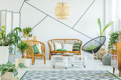 Plants in modern living room. Plants in modern white living room with rattan accessories Stock Photography
