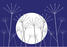 Plants and moon illustration Royalty Free Stock Photography