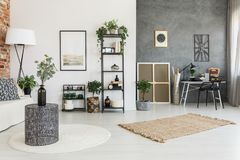 Plants in multifunctional living room. Brown and white carpet and plants in multifunctional living room with work area against concrete wall with metal clock royalty free stock photography