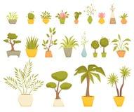Plants in pot set Stock Images