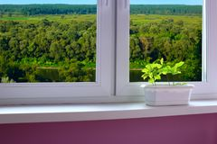 Plants in the pot on the window-sill and view to the river landscape stock photo