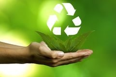 Plants and recycling symbol Stock Photos