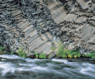 Plants and river at base of columnar basalt cliff Royalty Free Stock Photos