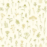 Plants seamless pattern. Stock Photo
