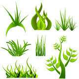 Plants set Royalty Free Stock Photography