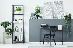 Plants, shelf and desk. Plants, metal shelf, decorations and black desk in a home office interior stock photo