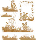 Plants, silhouette Stock Photo