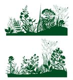 Plants_silhouette royalty free stock image