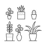 Plants in thin linear style. Royalty Free Stock Image