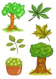 Plants and trees. Colored illustration of different images related to plants and trees Stock Photos