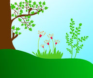 Plants and trees Royalty Free Stock Photo