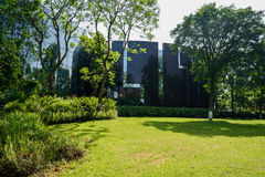Plants and trees outside modern building in sunny summer afterno Royalty Free Stock Photos
