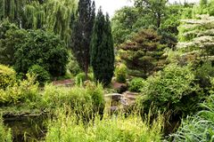 Plants and trees by the pond in Regent Park in London. UK Stock Photography