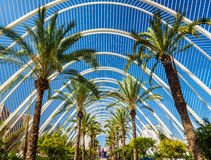 Plants in the Umbracle, a landscaped walk at he City of Arts and Sciences - Valencia, Spain Royalty Free Stock Images