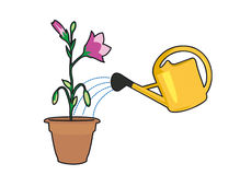 Plants and watering can. Flower pot and watering can yellow Vector Illustration