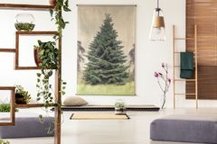 Plants on a wooden shelf in an oriental living room interior wit. H a tatami, mat, poufs, ladder and tree poster royalty free stock images
