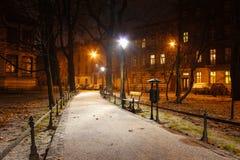 Planty -主要克拉科夫市公园在夜之前在冬天 库存照片