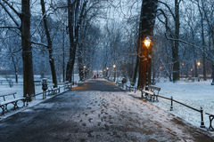 Planty - city park in Krakow, Poland. Royalty Free Stock Images