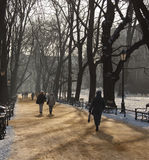 The Planty - Krakow - Poland. Walking in winter in the Planty, the largest city park in Krakow. It encircles the Stare Miasto (Old Town), and is where the Royalty Free Stock Image