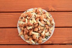 Planty of mushrooms Stock Photo