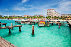 plażowa ruchliwie palma Obraz Stock