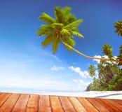 Plażowego lato relaksu sceny Spokojny pojęcie Obraz Royalty Free