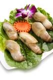 Plaque complètement des huîtres Image libre de droits