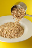 Plaque de granola photo libre de droits