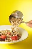 Plaque de granola photographie stock libre de droits