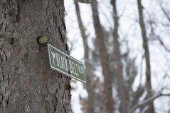 Plaque de rue du côté d'un arbre en hiver image stock