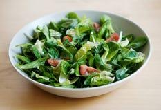Plaque de salade Photos stock