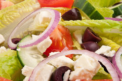 Plaque de salade pour le style de vie sain Photos libres de droits