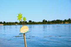 Plaque en bois de palmiers d'île sous l'eau d'inscription Photo libre de droits