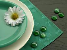 Plaque et camomille blanches et vertes Photographie stock libre de droits