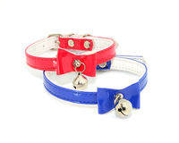 Plascti collar for cats