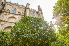 Plasencia Cathedral from orange tree garden, Spain Royalty Free Stock Photography
