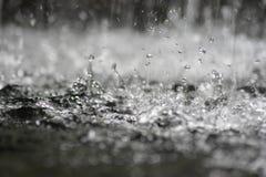 plaska för regn Royaltyfria Bilder