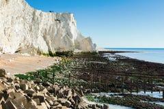 Plaska punkt, Seaford, East Sussex royaltyfri foto