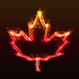 Plasma Maple Leaf Stock Images