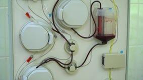 Plasmapheresis Het schoonmaken van het geduldige s-bloed door het apparaat Het proces van afscheiding van bloedplasma van stock videobeelden