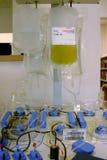 Plasmaphoresis Maschine mit dem Beutelhängen lizenzfreie stockfotos