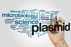 Plasmid word cloud Stock Images