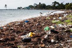 Plast- avfall på den karibiska stranden Arkivbilder