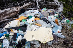 Plast- avskräde i mangroveskog Royaltyfria Bilder