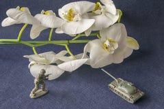 Plast- behållare för leksak och militär man med den vita blomman royaltyfria foton