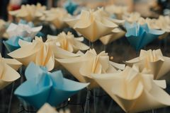 Plast- blommar plumeria royaltyfria bilder