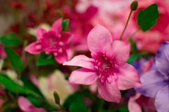 Plast-blommor Royaltyfri Fotografi