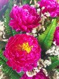 Plast- blommor och sidor Royaltyfri Foto