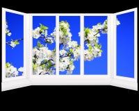 Plast- fönster som förbiser trädgården Arkivbild